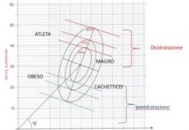 BIA-Vector